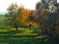 Herbstwanderung2015_025